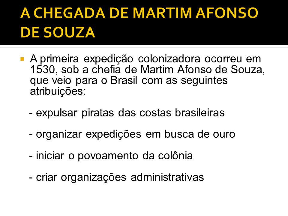 A CHEGADA DE MARTIM AFONSO DE SOUZA
