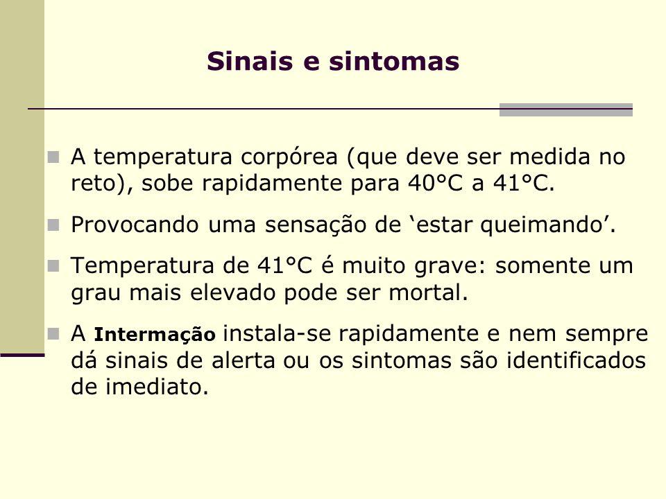 Sinais e sintomas A temperatura corpórea (que deve ser medida no reto), sobe rapidamente para 40°C a 41°C.