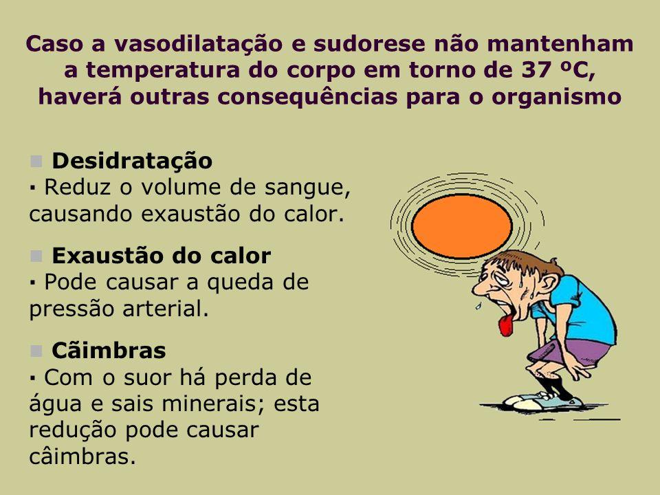 Caso a vasodilatação e sudorese não mantenham a temperatura do corpo em torno de 37 ºC, haverá outras consequências para o organismo