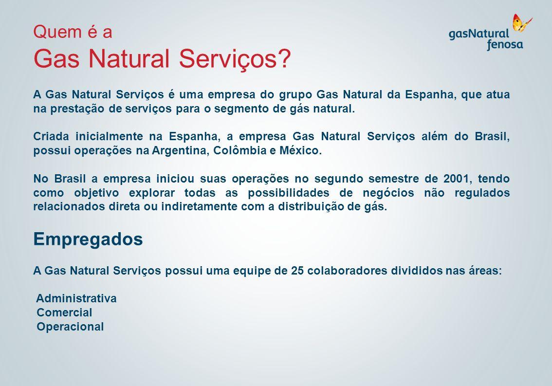 Gas Natural Serviços Quem é a Empregados