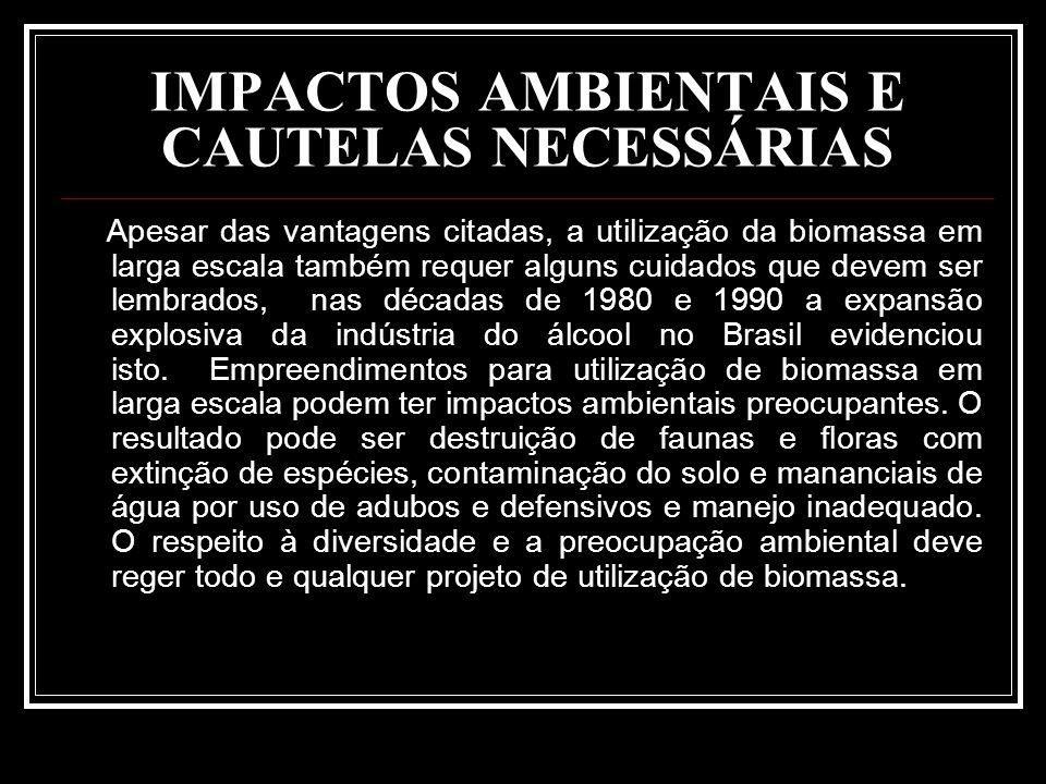 IMPACTOS AMBIENTAIS E CAUTELAS NECESSÁRIAS