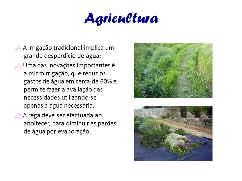 Agricultura  A irrigação tradicional implica um grande desperdício de água;
