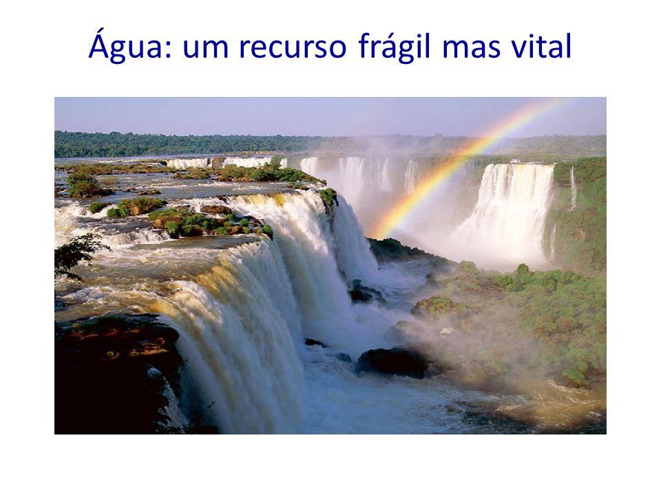 Água: um recurso frágil mas vital