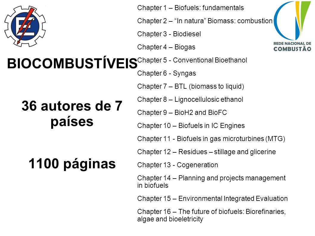 BIOCOMBUSTÍVEIS 36 autores de 7 países