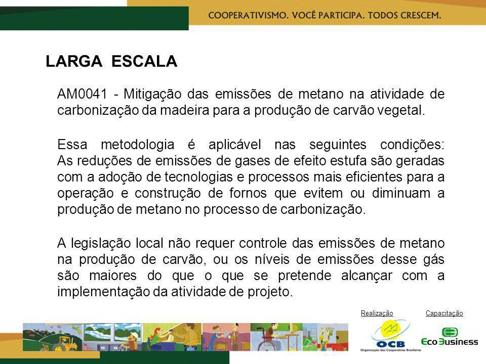 LARGA ESCALA AM0041 - Mitigação das emissões de metano na atividade de carbonização da madeira para a produção de carvão vegetal.