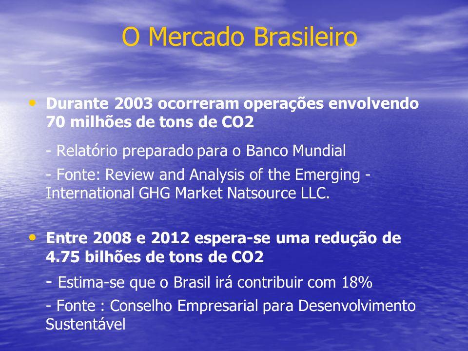 O Mercado Brasileiro - Relatório preparado para o Banco Mundial