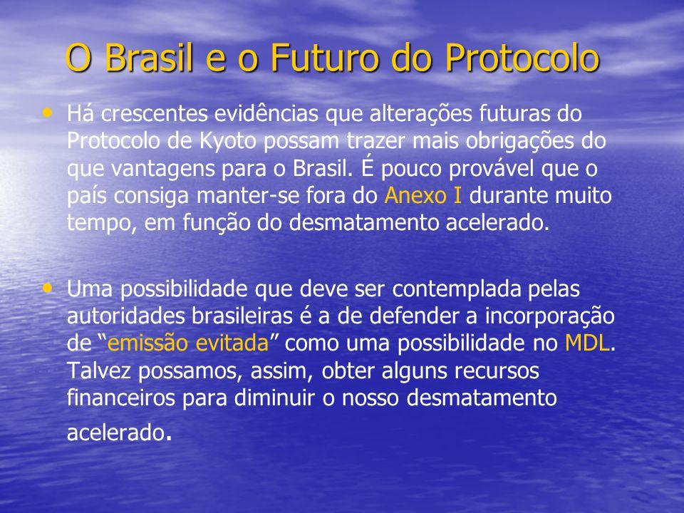 O Brasil e o Futuro do Protocolo
