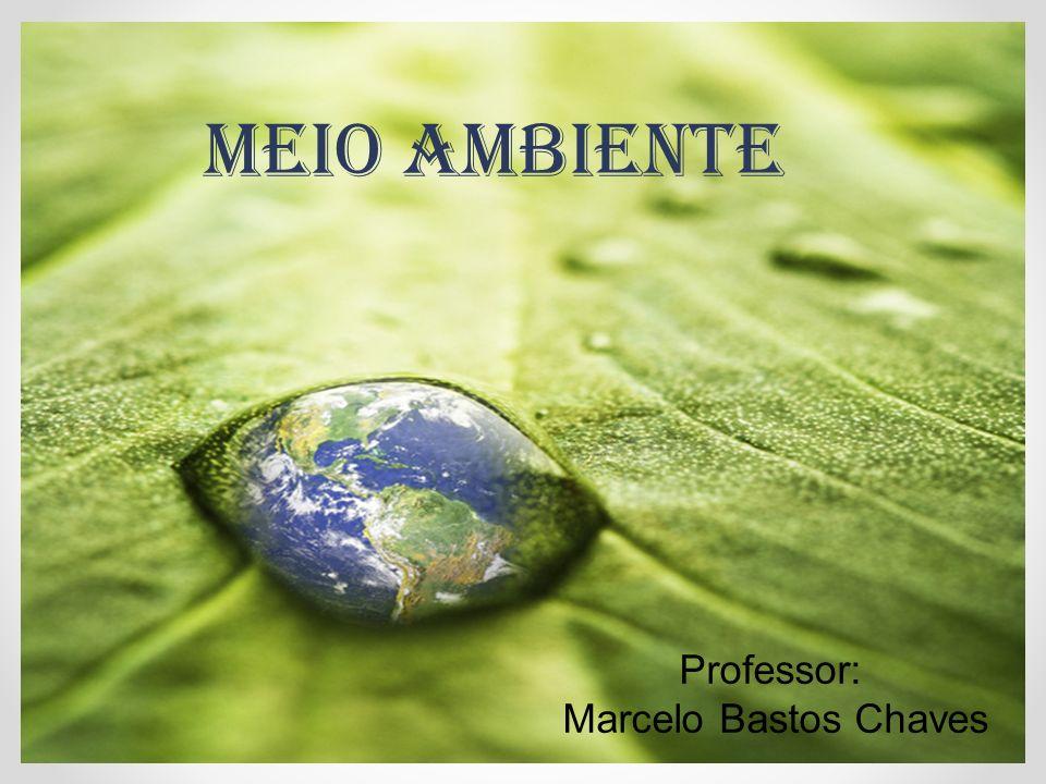 MEIO AMBIENTE Professor: Marcelo Bastos Chaves