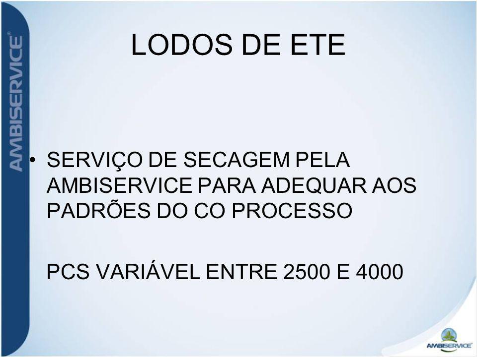 LODOS DE ETE SERVIÇO DE SECAGEM PELA AMBISERVICE PARA ADEQUAR AOS PADRÕES DO CO PROCESSO.
