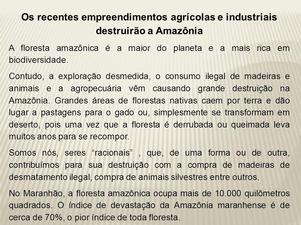 Os recentes empreendimentos agrícolas e industriais destruirão a Amazônia