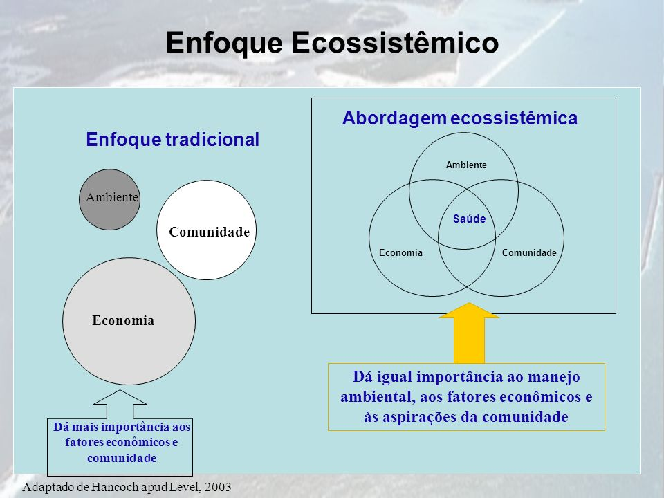 Enfoque Ecossistêmico