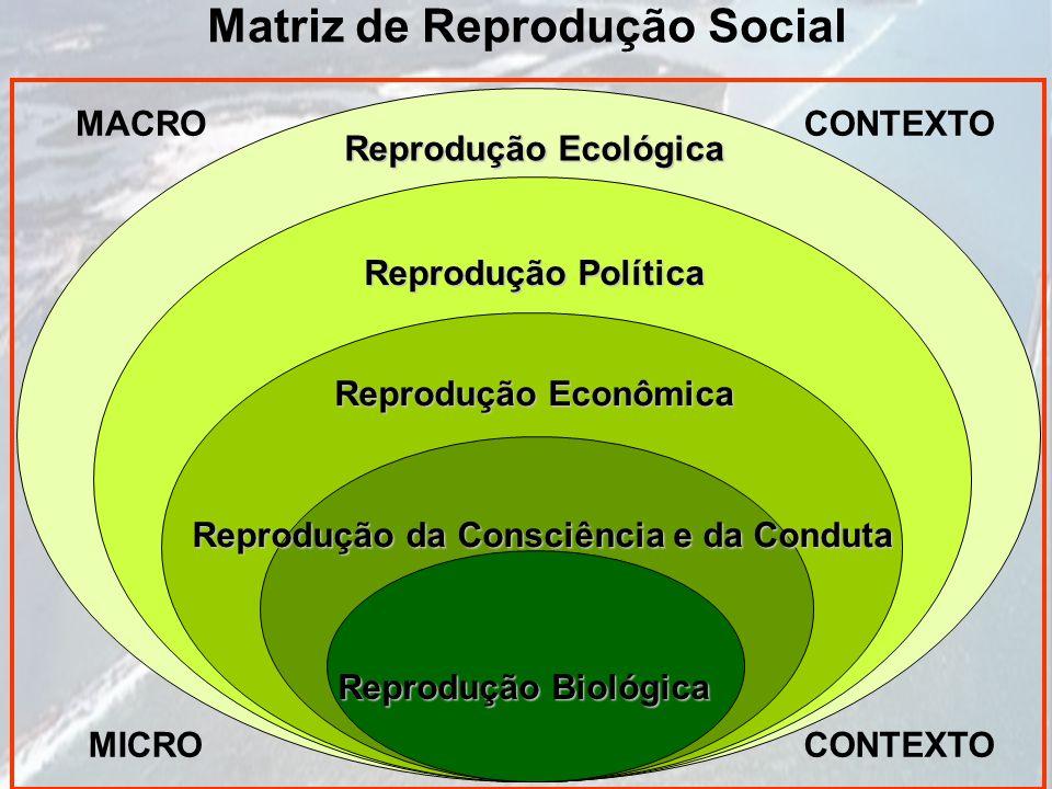 Matriz de Reprodução Social