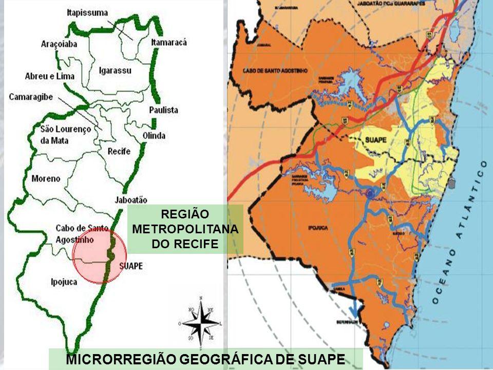 REGIÃO METROPOLITANA DO RECIFE MICRORREGIÃO GEOGRÁFICA DE SUAPE