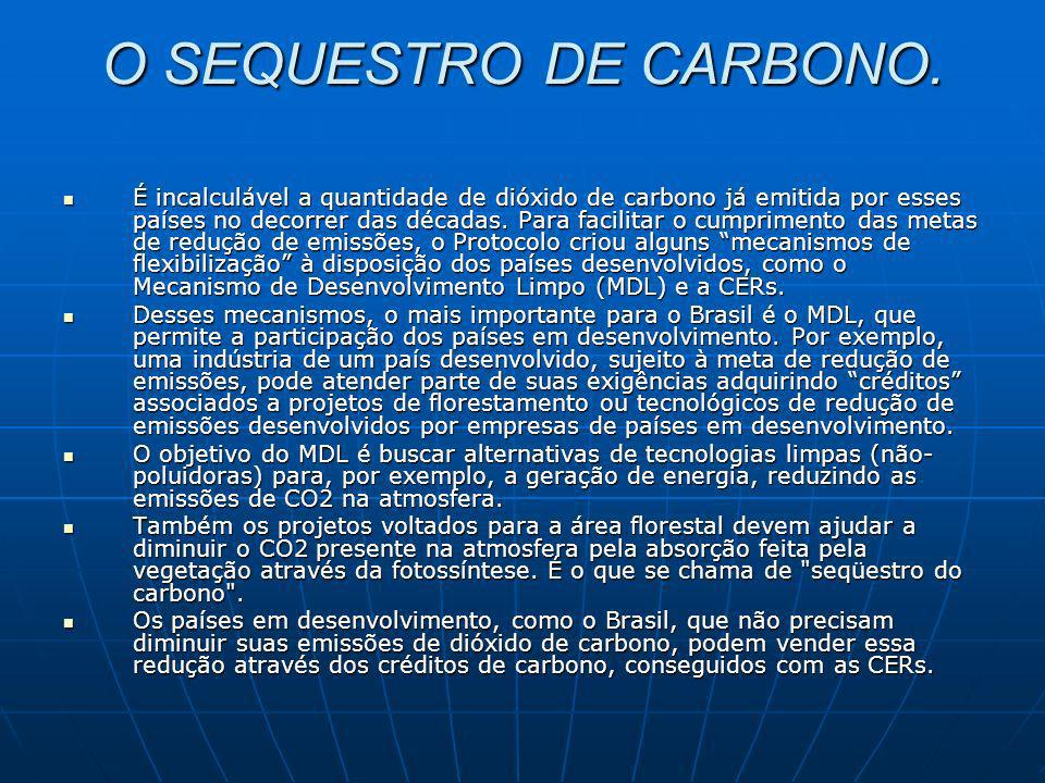 O SEQUESTRO DE CARBONO.