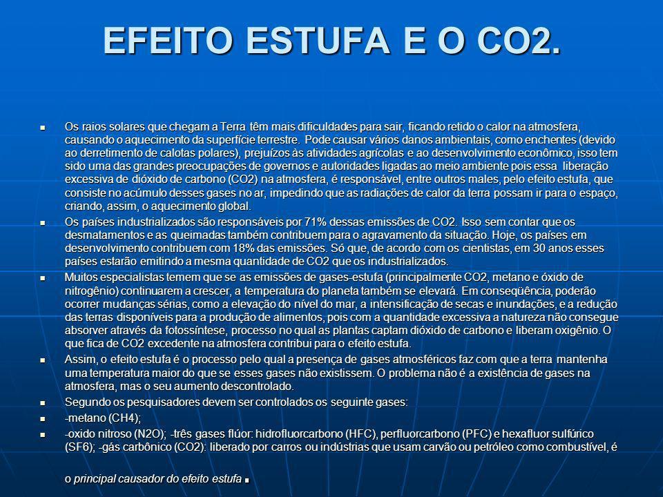 EFEITO ESTUFA E O CO2.