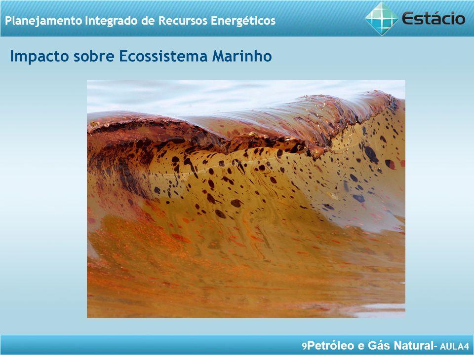 Impacto sobre Ecossistema Marinho