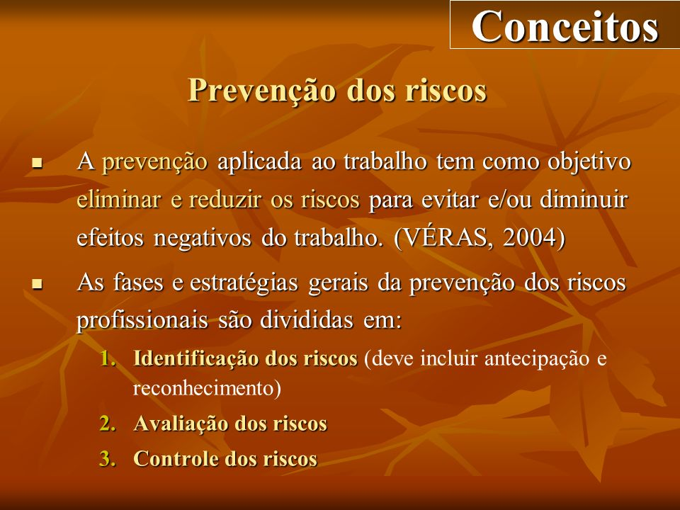 Conceitos Prevenção dos riscos