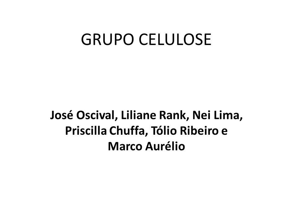 GRUPO CELULOSE José Oscival, Liliane Rank, Nei Lima, Priscilla Chuffa, Tólio Ribeiro e Marco Aurélio.