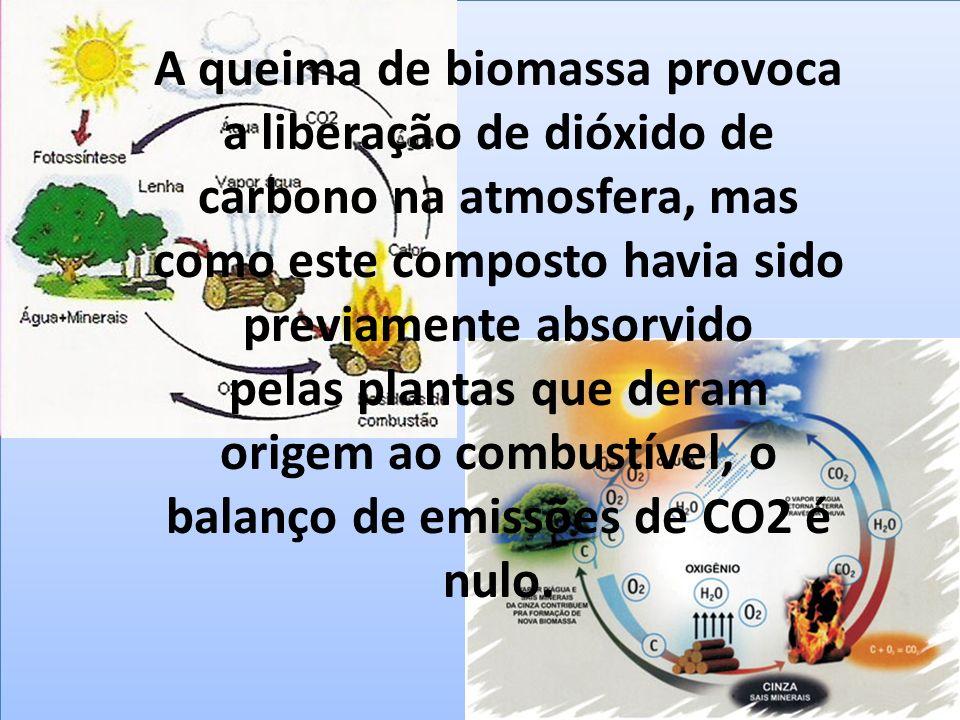 A queima de biomassa provoca a liberação de dióxido de carbono na atmosfera, mas como este composto havia sido previamente absorvido pelas plantas que deram origem ao combustível, o balanço de emissões de CO2 é nulo.