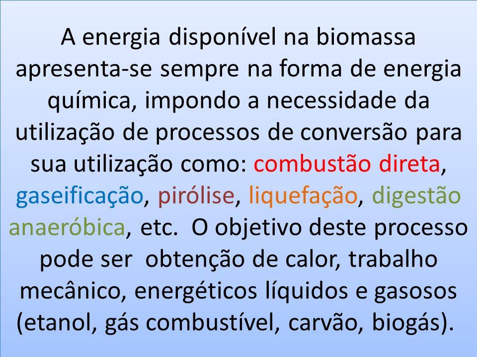 A energia disponível na biomassa apresenta-se sempre na forma de energia química, impondo a necessidade da utilização de processos de conversão para sua utilização como: combustão direta, gaseificação, pirólise, liquefação, digestão anaeróbica, etc. O objetivo deste processo pode ser obtenção de calor, trabalho mecânico, energéticos líquidos e gasosos (etanol, gás combustível, carvão, biogás).