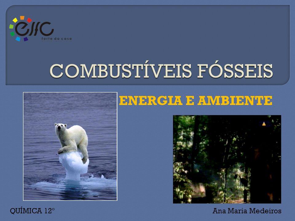 COMBUSTÍVEIS FÓSSEIS ENERGIA E AMBIENTE QUÍMICA 12º Ana Maria Medeiros