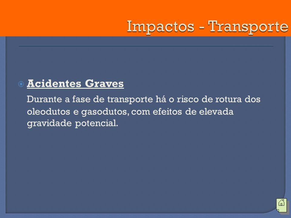 Impactos - Transporte Acidentes Graves.