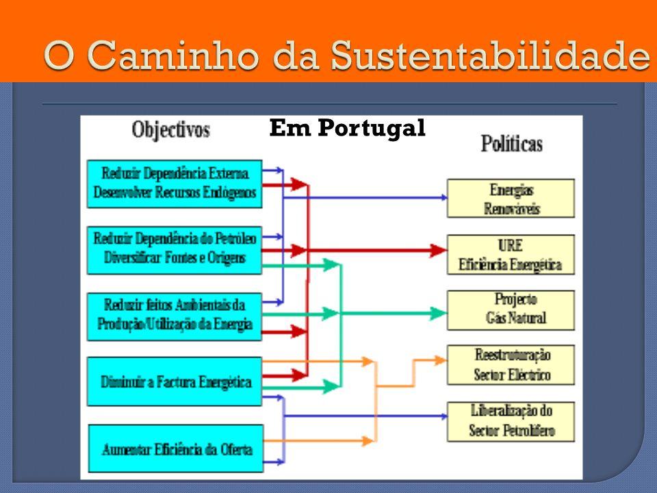 O Caminho da Sustentabilidade