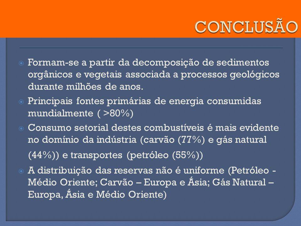 CONCLUSÃO Formam-se a partir da decomposição de sedimentos orgânicos e vegetais associada a processos geológicos durante milhões de anos.