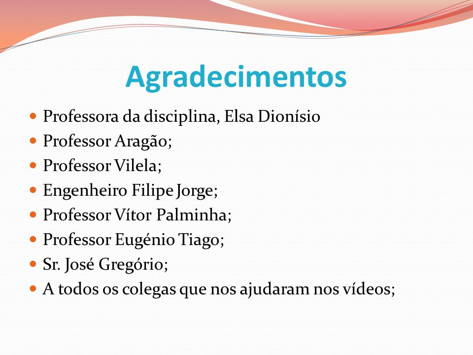Agradecimentos Professora da disciplina, Elsa Dionísio