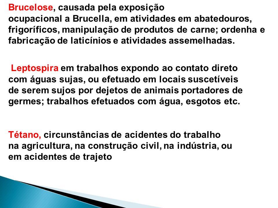 Brucelose, causada pela exposição