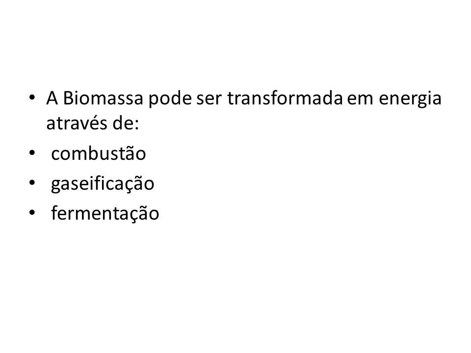 A Biomassa pode ser transformada em energia através de: