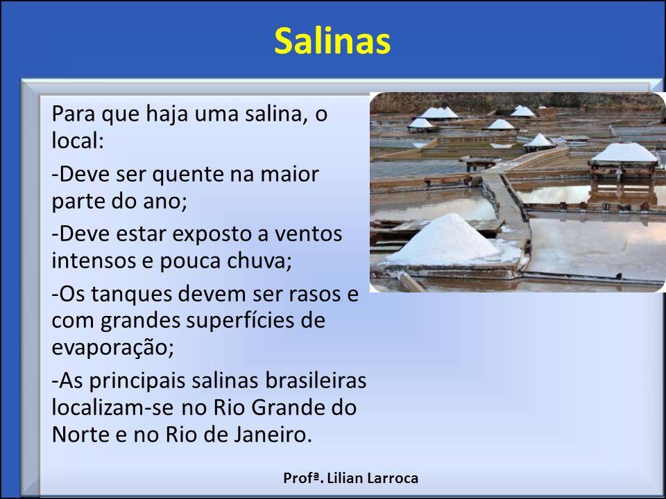 Salinas Para que haja uma salina, o local: