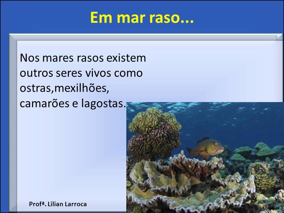 Em mar raso... Nos mares rasos existem outros seres vivos como ostras,mexilhões, camarões e lagostas.
