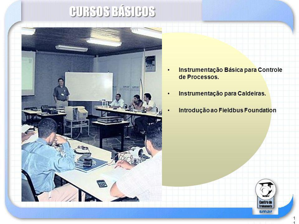 CURSOS BÁSICOS Instrumentação Básica para Controle de Processos.