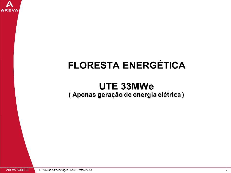 FLORESTA ENERGÉTICA UTE 33MWe ( Apenas geração de energia elétrica )