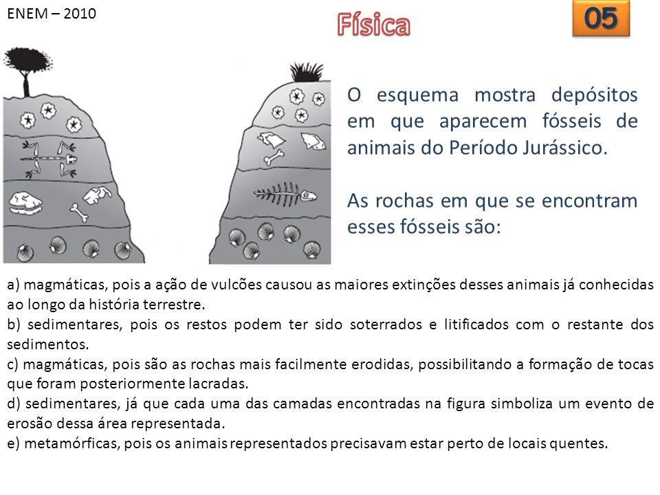 ENEM – 2010 Física. 05. O esquema mostra depósitos em que aparecem fósseis de animais do Período Jurássico.