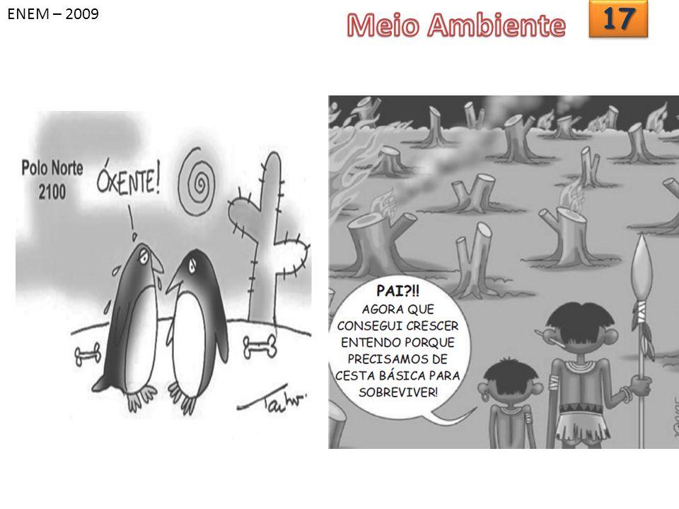 ENEM – 2009 Meio Ambiente 17