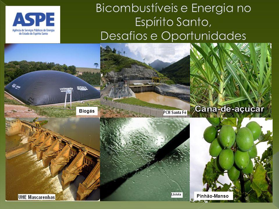 Bicombustíveis e Energia no Espírito Santo, Desafios e Oportunidades