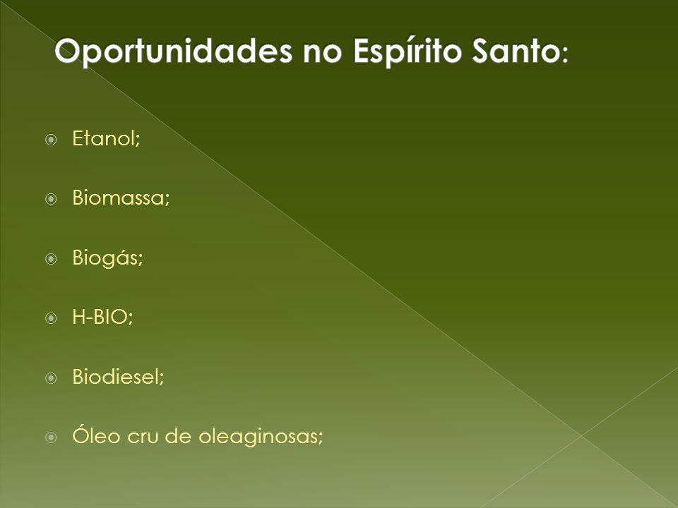 Oportunidades no Espírito Santo: