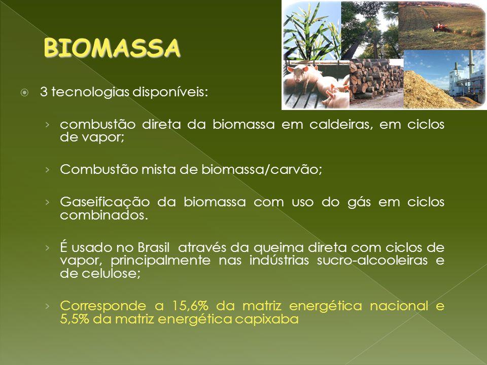 BIOMASSA 3 tecnologias disponíveis: