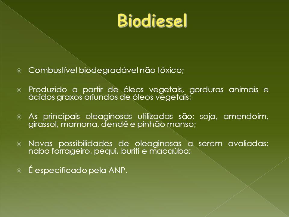 Biodiesel Combustível biodegradável não tóxico;