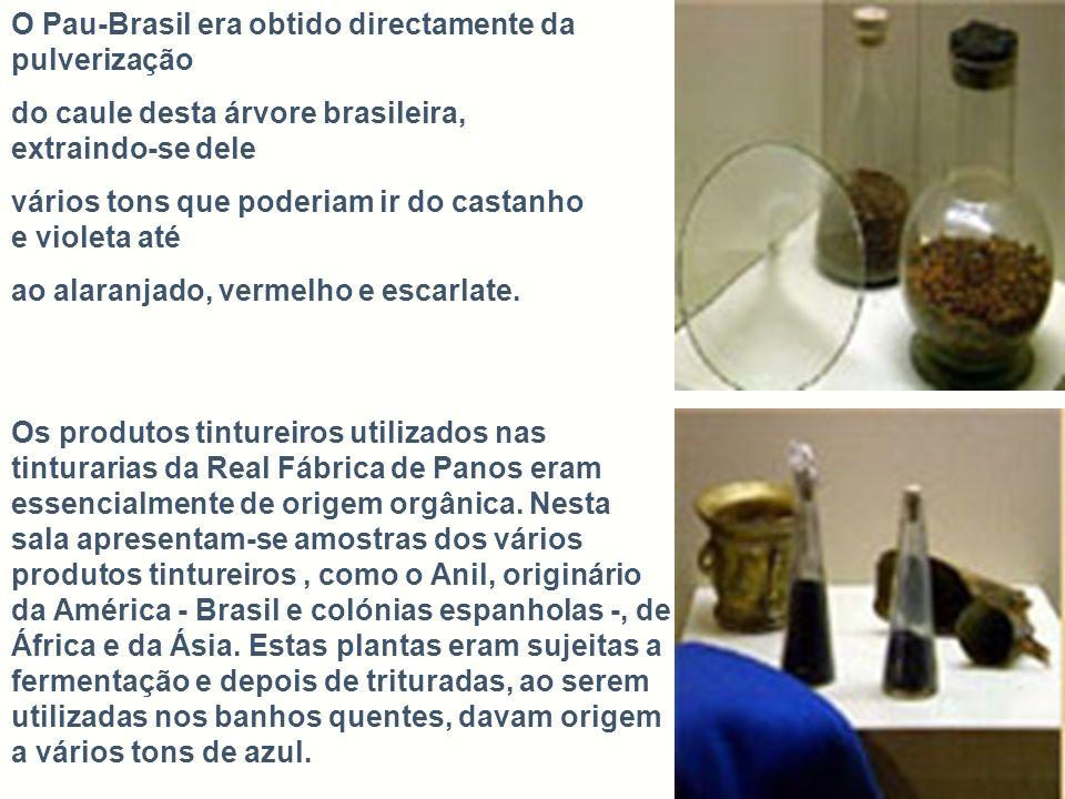 O Pau-Brasil era obtido directamente da pulverização