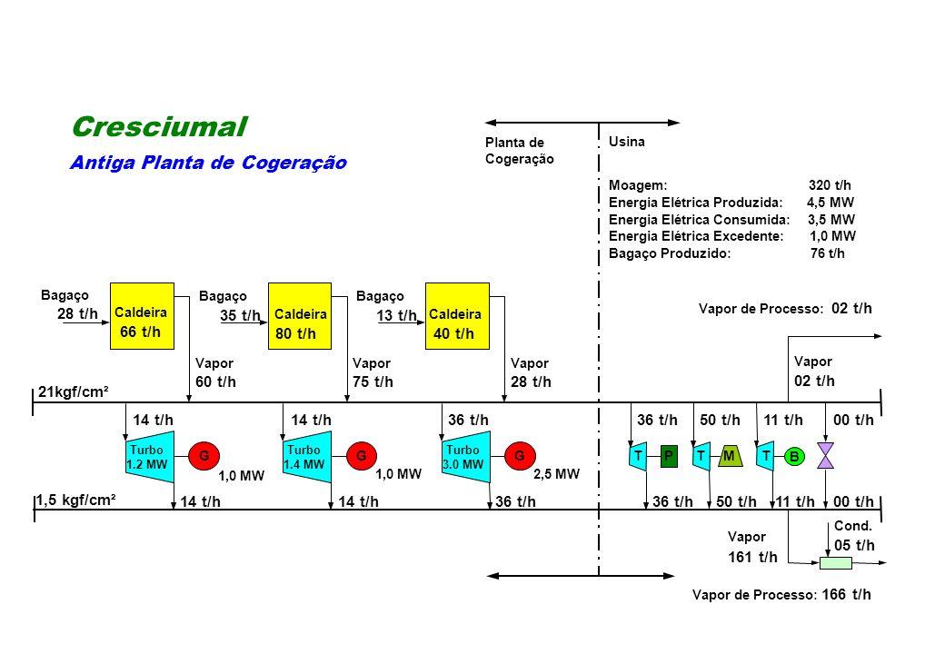 Cresciumal Antiga Planta de Cogeração 28 t/h 35 t/h 13 t/h 66 t/h