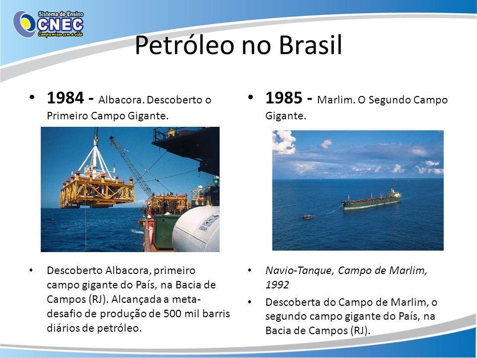 Petróleo no Brasil 1984 - Albacora. Descoberto o Primeiro Campo Gigante.