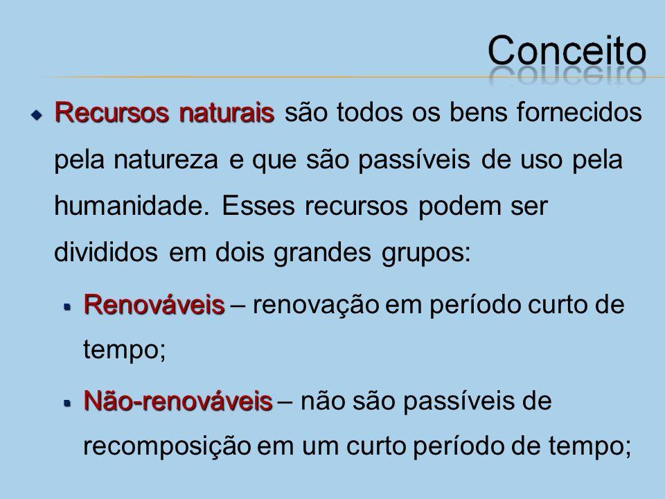 Recursos naturais são todos os bens fornecidos pela natureza e que são passíveis de uso pela humanidade. Esses recursos podem ser divididos em dois grandes grupos: