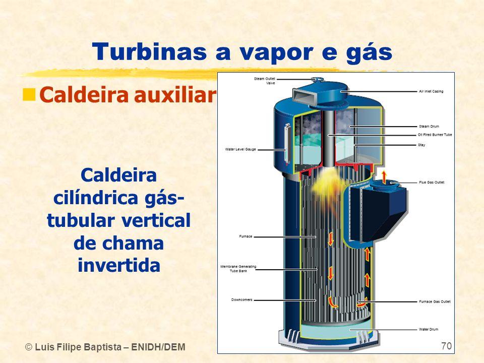 Caldeira cilíndrica gás-tubular vertical de chama invertida