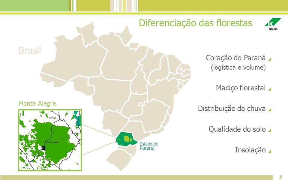 Diferenciação das florestas
