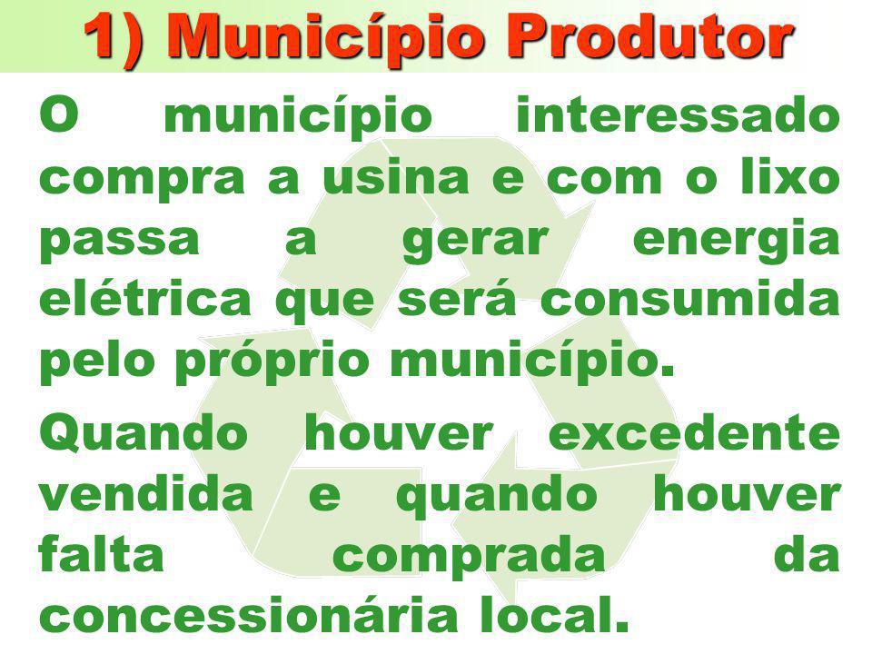 1) Município Produtor O município interessado compra a usina e com o lixo passa a gerar energia elétrica que será consumida pelo próprio município.