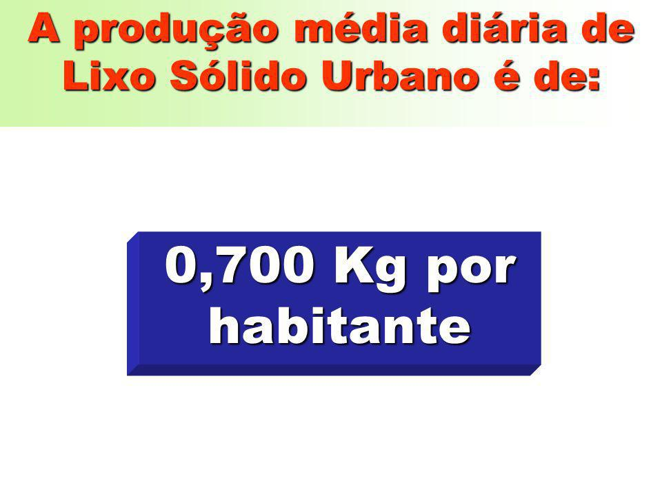 A produção média diária de Lixo Sólido Urbano é de: