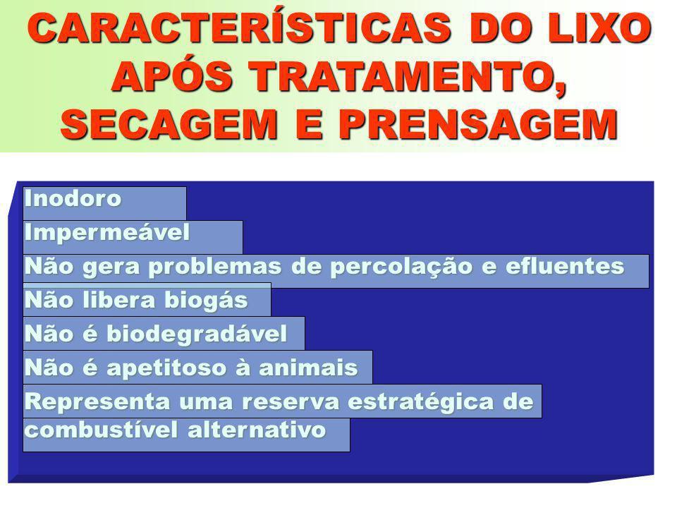 CARACTERÍSTICAS DO LIXO APÓS TRATAMENTO, SECAGEM E PRENSAGEM